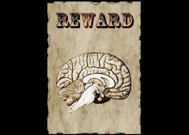 7 Ways to Reward the Brain