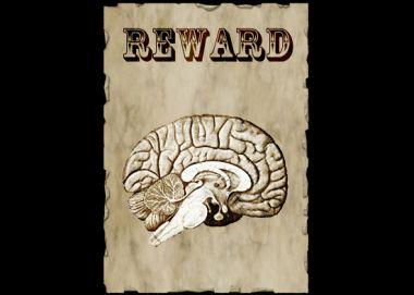 7 Ways to Reward the Brain